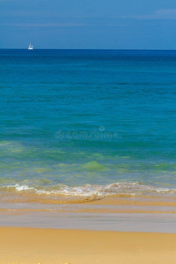 Caminhada sentimental ao longo da praia fotos de stock