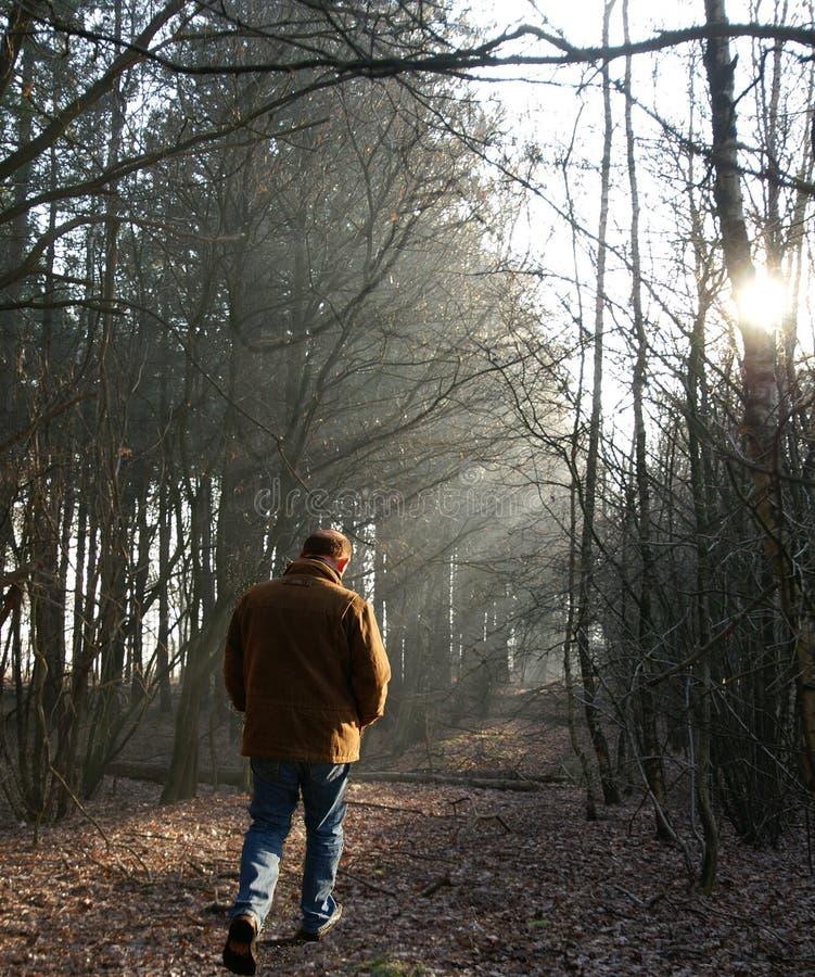 Caminhada solitária foto de stock