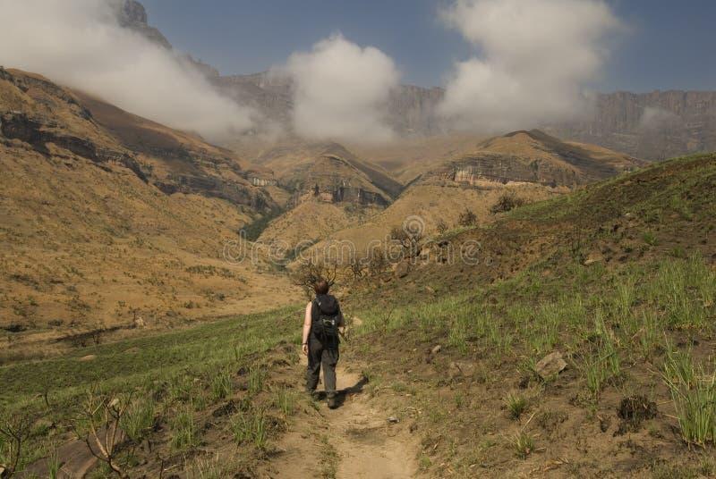Caminhando acima o tribo Zulu de Kwa natal imagens de stock