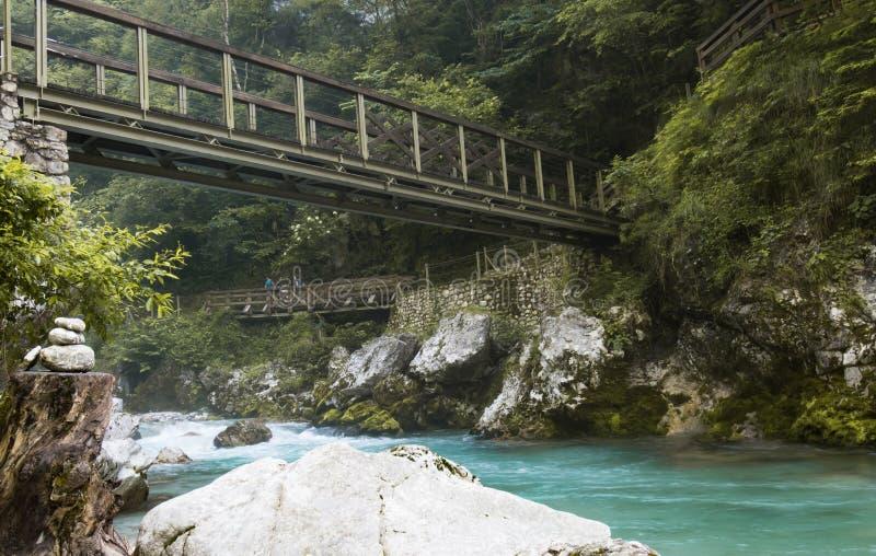Caminhando com o tolmin bonito gorges no parque nacional do triglav, slovenia fotografia de stock