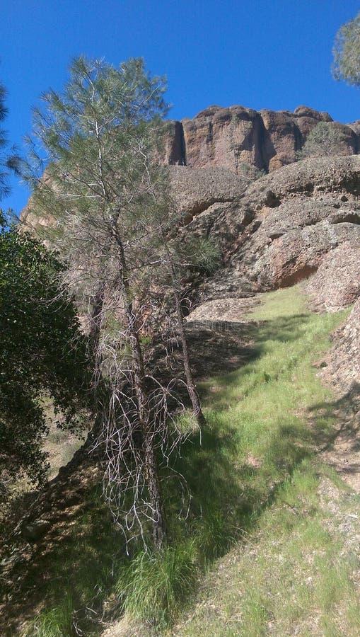Caminhando Diamond Mines preto imagens de stock royalty free