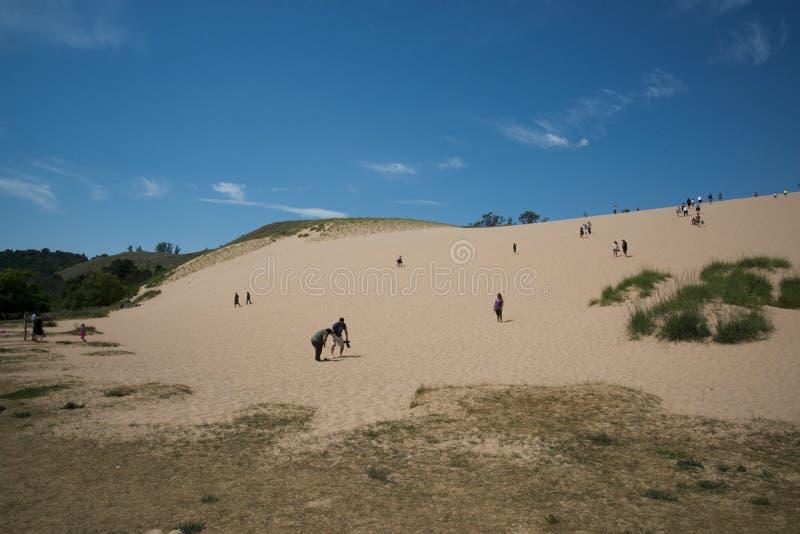 Caminhando dunas do urso acima do sono foto de stock royalty free