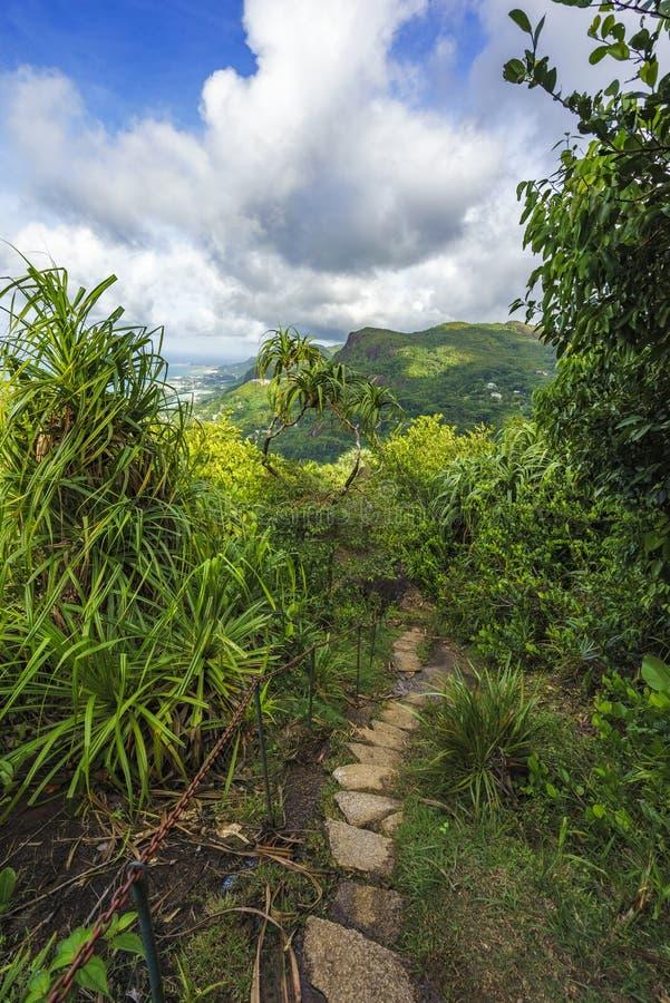 Caminhando a fuga do copolia, o granito balança na selva no mahé, s fotografia de stock