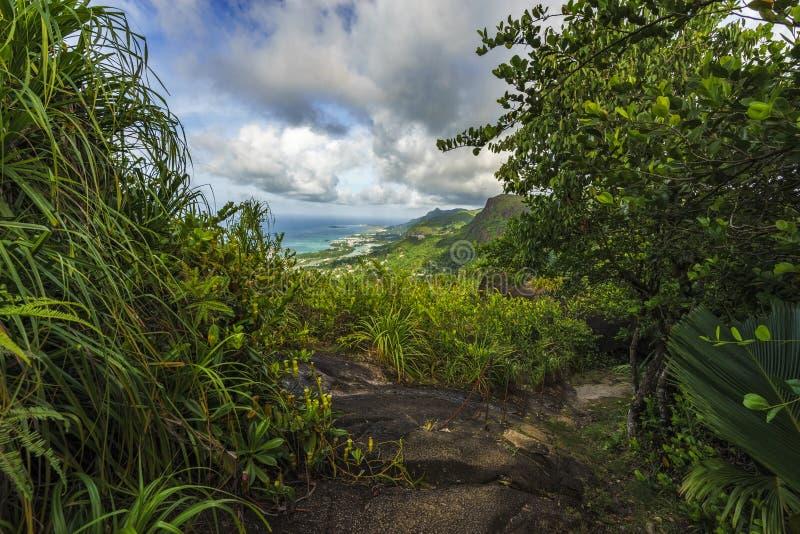 Caminhando a fuga do copolia, o granito balança na selva no mahé, s fotos de stock royalty free