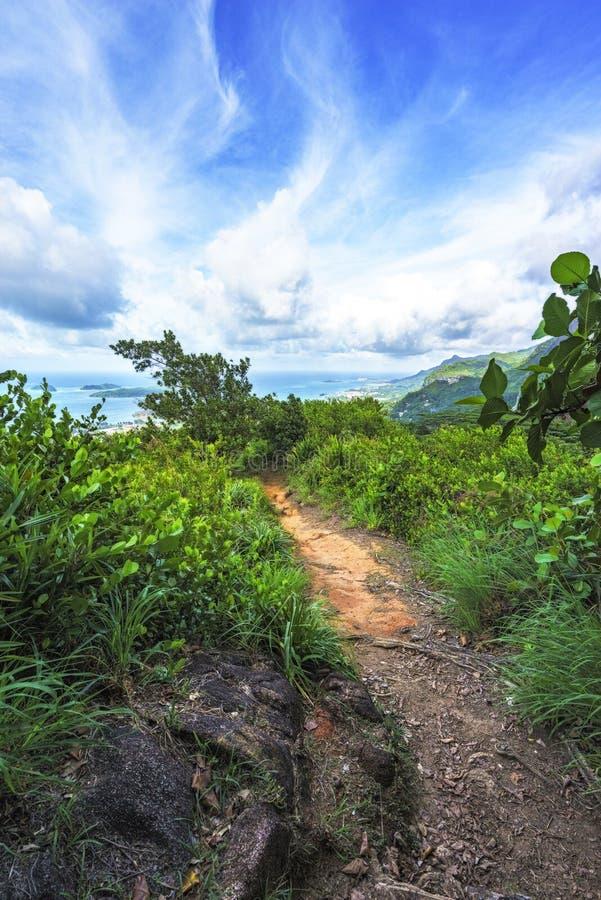 Caminhando a fuga do copolia, o granito balança na selva no mahé, s fotografia de stock royalty free