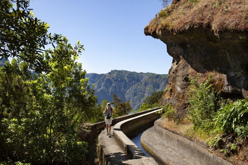 Caminhando Madeira imagem de stock