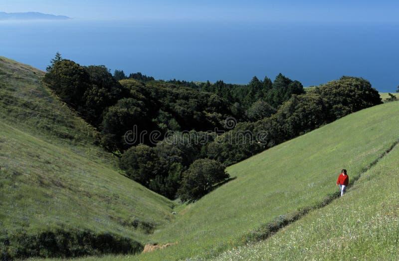 Caminhando montes de Califórnia foto de stock