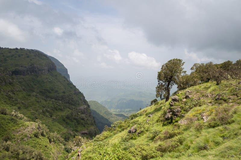 Caminhando nas montanhas de Simien, Etiópia fotos de stock