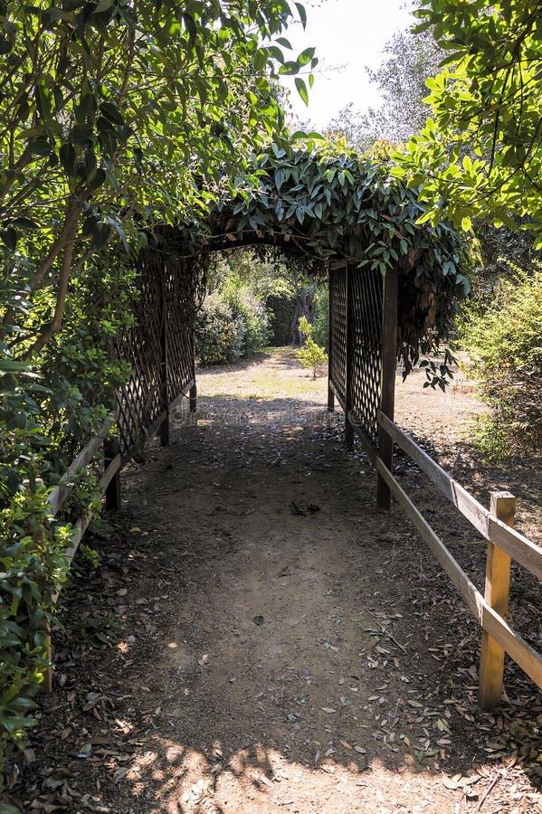 Caminhando o caminho com arcada das flores em um parque em Riviera francês foto de stock royalty free