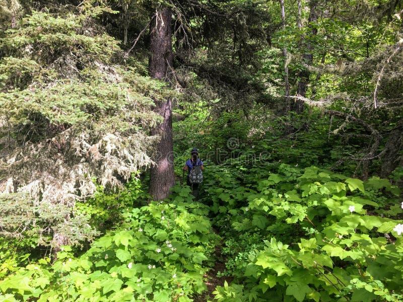 Caminhando o terreno rochoso da fuga do lago crypt, uma subida íngreme fotografia de stock