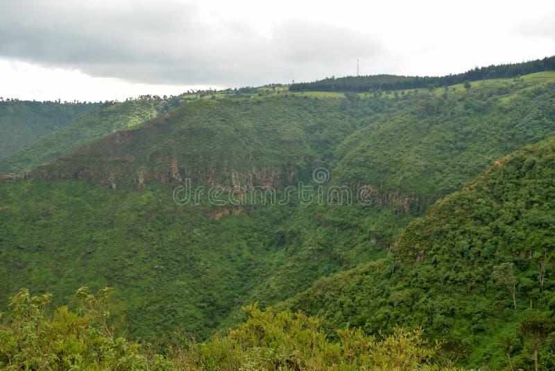 Caminhando os montes de Kijabe, Kenya fotografia de stock royalty free