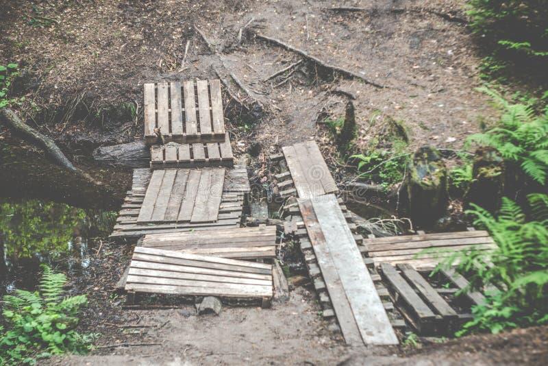 Caminhando a ponte na floresta fotos de stock royalty free