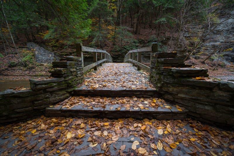 Caminhando a ponte no outono imagens de stock royalty free