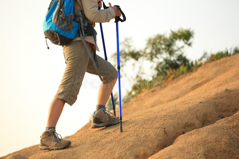 Caminhante da mulher no deserto imagens de stock royalty free