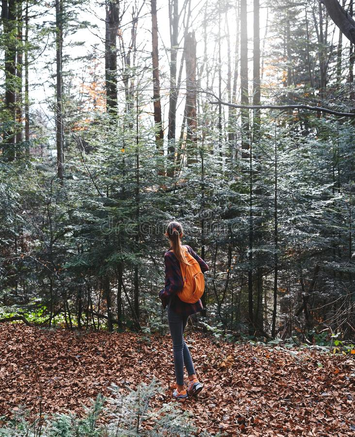 Caminhante da mulher que anda na fuga em madeiras misteriosas Vista traseira imagem de stock royalty free