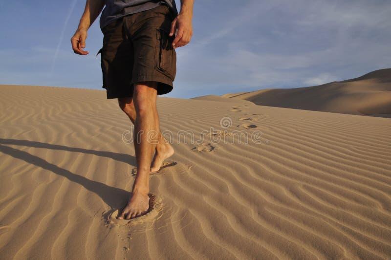 Caminhante descalço do deserto fotos de stock