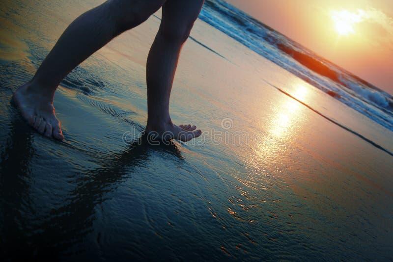 Caminhante do por do sol foto de stock royalty free