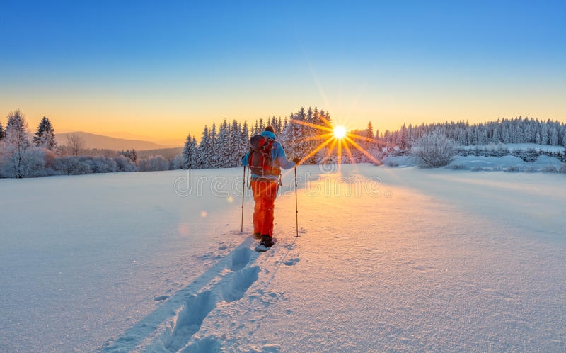 Caminhante do sapato de neve que corre na neve do pó foto de stock royalty free