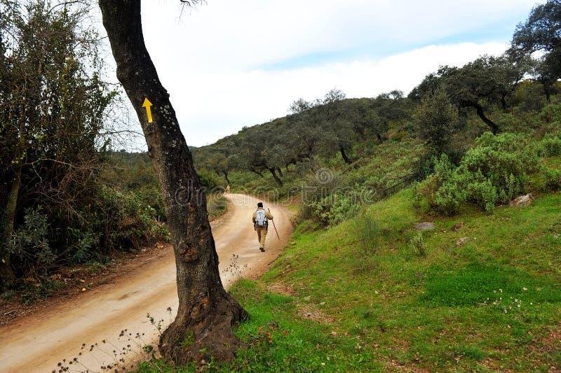 Caminhante em Cerro Muriano, província de Córdova, a Andaluzia, Espanha foto de stock royalty free