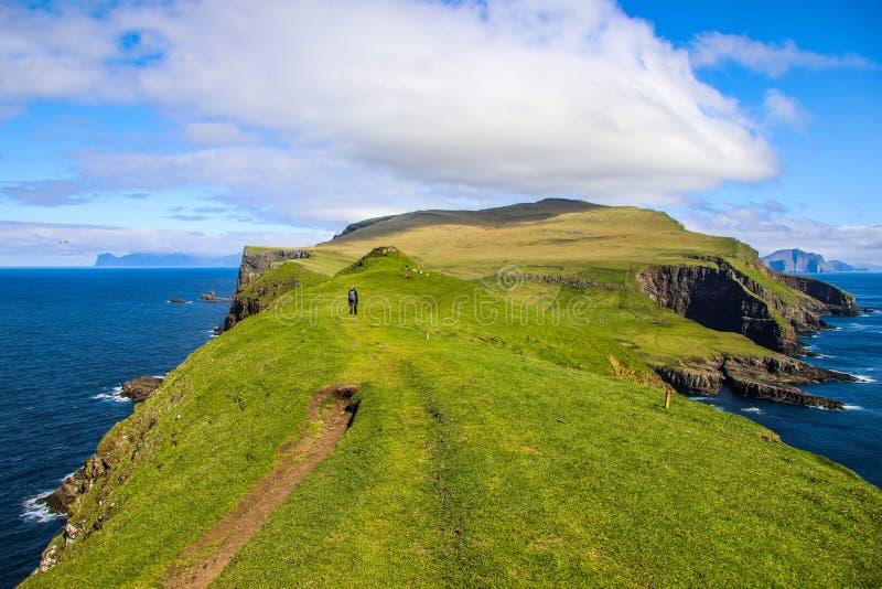 Caminhante fêmea entre a paisagem verde da ilha de Mykines nas Faroé imagem de stock royalty free