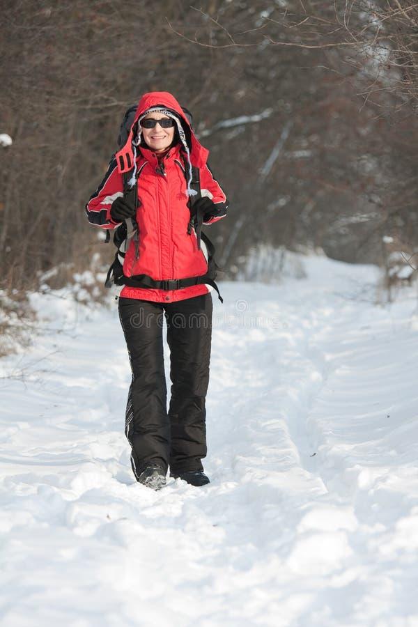 Caminhante na floresta do inverno