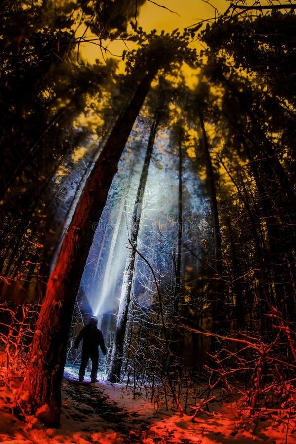 Caminhante na noite com lâmpada principal fotos de stock royalty free