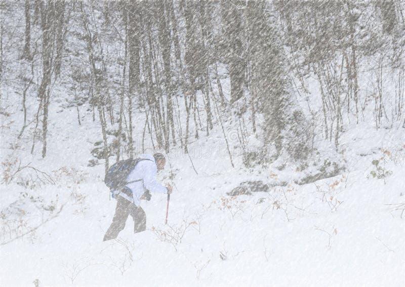 Caminhante na tempestade de neve imagens de stock