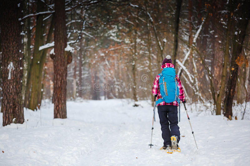 Caminhante no esporte, na inspiração e no curso da floresta do inverno imagens de stock