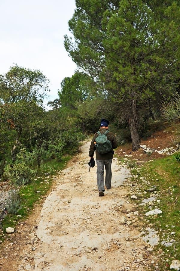 Caminhante no Mozarabic Camino de Santiago, Cerro Muriano, província de Córdova, a Andaluzia, Espanha foto de stock royalty free