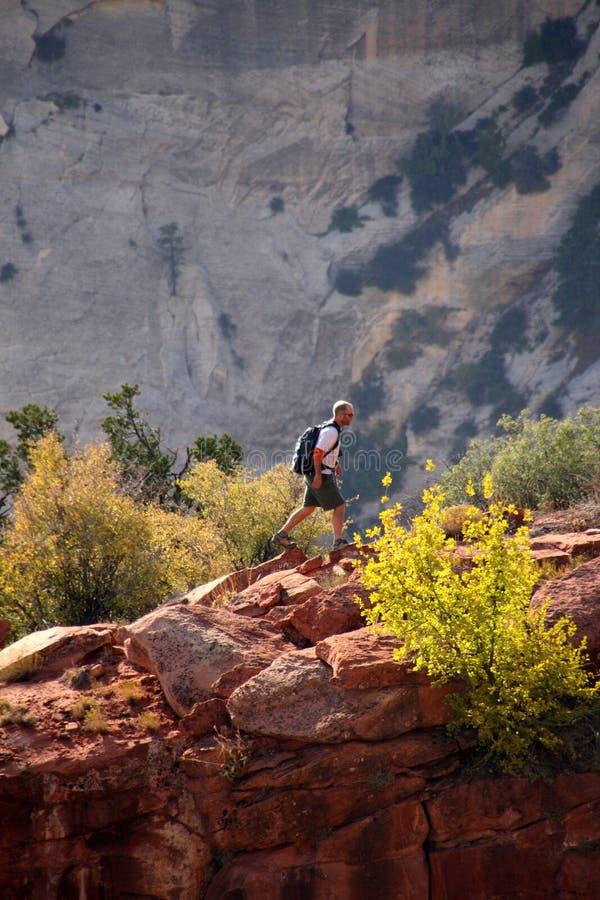 Caminhante no parque nacional de Zion imagens de stock