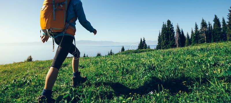 caminhante que anda no monte verde bonito da montanha imagem de stock