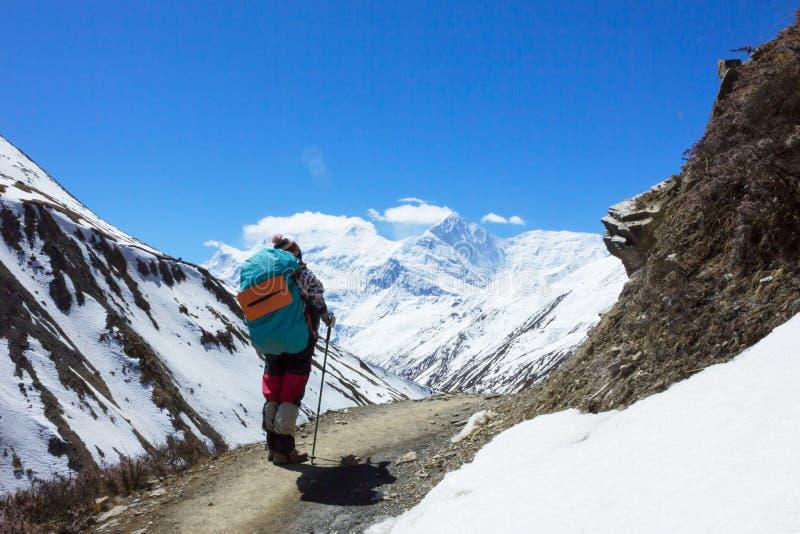 Caminhante só que trekking em montanhas de Himalaya, circuito T de Annapurna fotografia de stock
