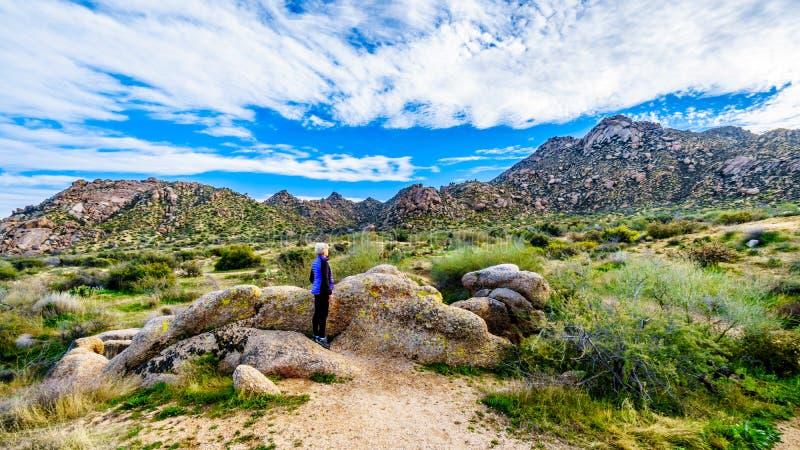 Caminhante superior da mulher que aprecia a vista do vale do Sun e da cordilheira de McDowell vistos da fuga do polegar de tom imagem de stock royalty free