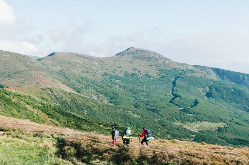 Caminhantes com as trouxas na montanha e em apreciar a vista do vale imagens de stock