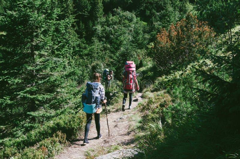 Caminhantes com as trouxas na montanha e em apreciar a vista do vale imagem de stock