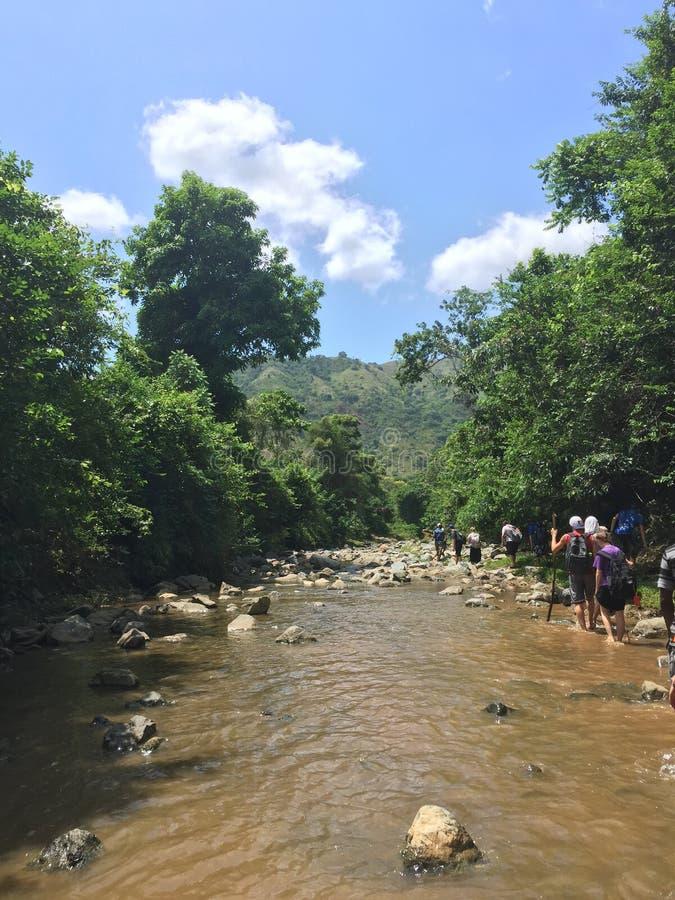 Caminhantes do rio na selva fotos de stock