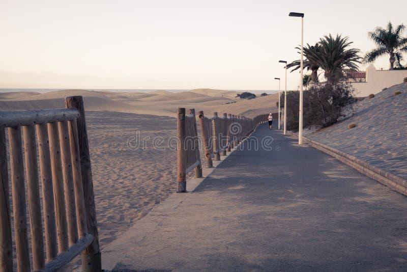 Caminhantes e corredores no passeio do beira-mar fotos de stock royalty free