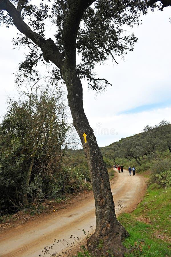 Caminhantes em Cerro Muriano, província de Córdova, a Andaluzia, Espanha imagens de stock royalty free