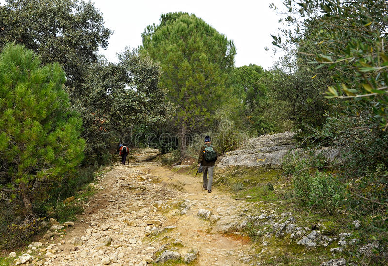 Caminhantes em Cerro Muriano, província do rdoba do ³ de CÃ, Espanha foto de stock