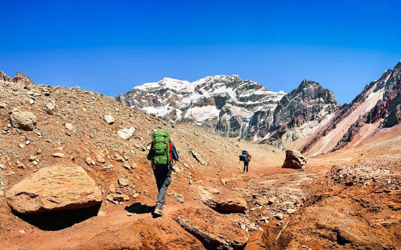 Caminhantes em sua maneira a Aconcagua como visto no fundo, Argentina, Ámérica do Sul fotos de stock royalty free
