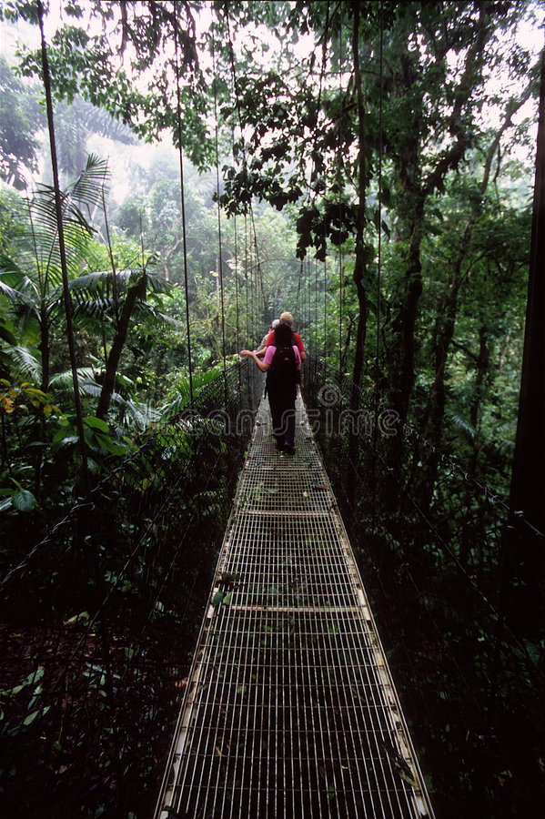 Caminhantes na ponte de suspensão