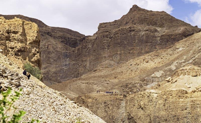 Caminhantes nas fugas acima de Nahal David na reserva de Ein Gedi em Israel fotografia de stock
