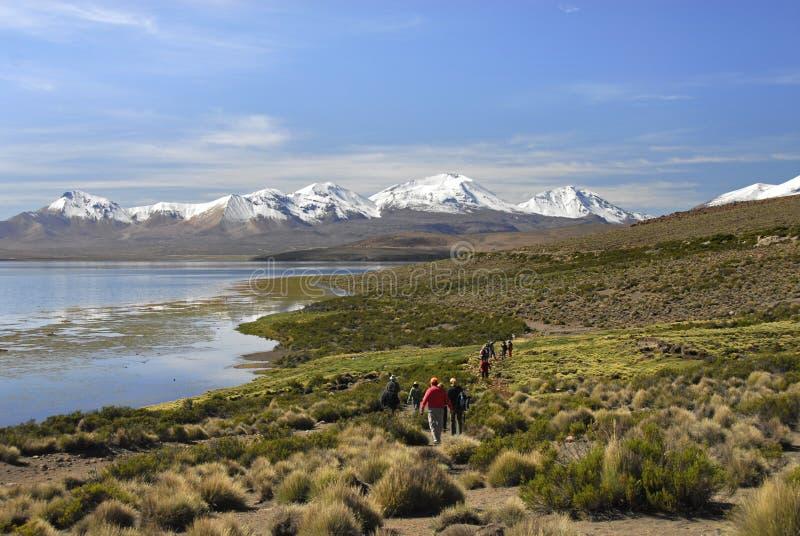 Caminhantes no lago Chungara no parque nacional de Lauca imagens de stock