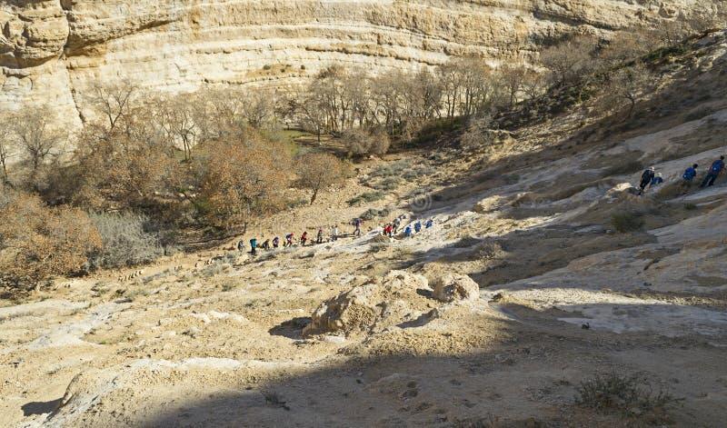 Caminhantes que escalam acima as paredes de garganta de Nahal Zin no Negev fotografia de stock royalty free
