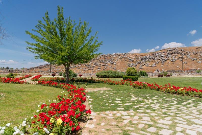 Caminho à cidade greco-romana antiga Hierapolis perto de Pamukkale em Turquia Paisagem da natureza foto de stock royalty free