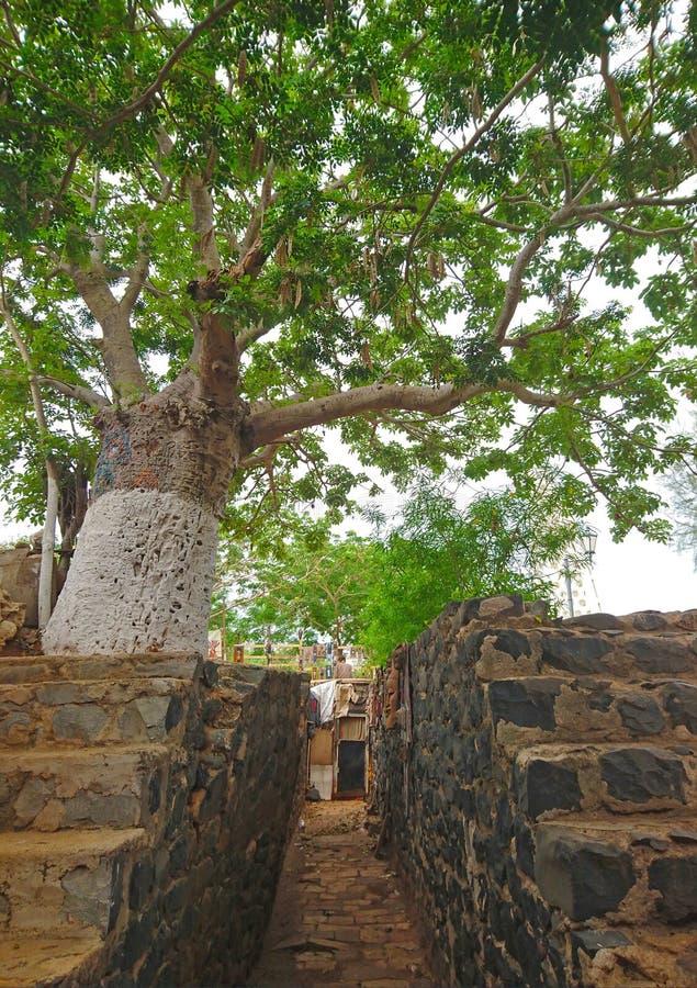 Caminho através de duas paredes na ilha de Goree imagem de stock
