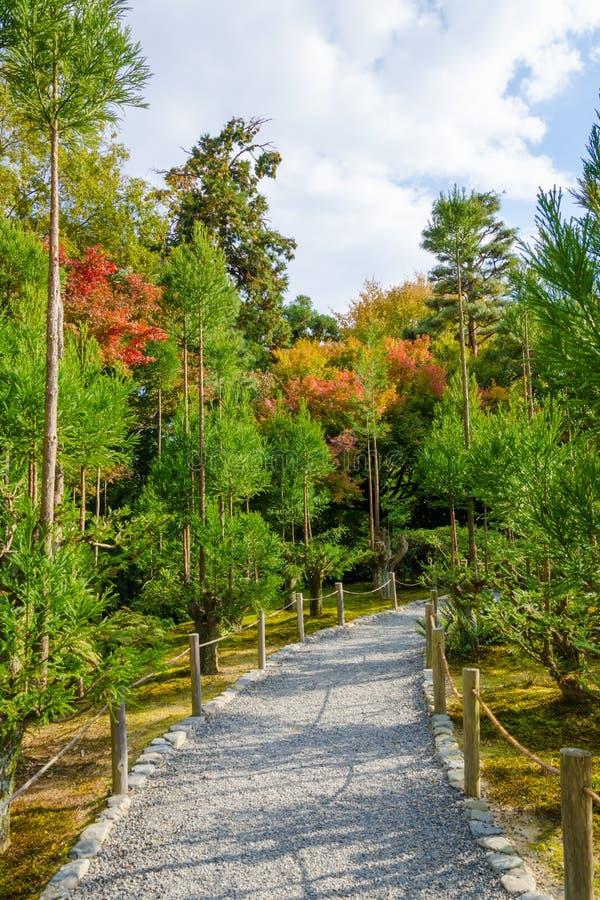 Caminho bonito do jardim imagens de stock