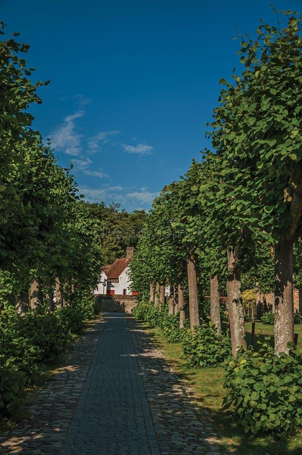 Caminho com as árvores no jardim de ruínas medievais da igreja, no final da luz da tarde em Damme fotografia de stock
