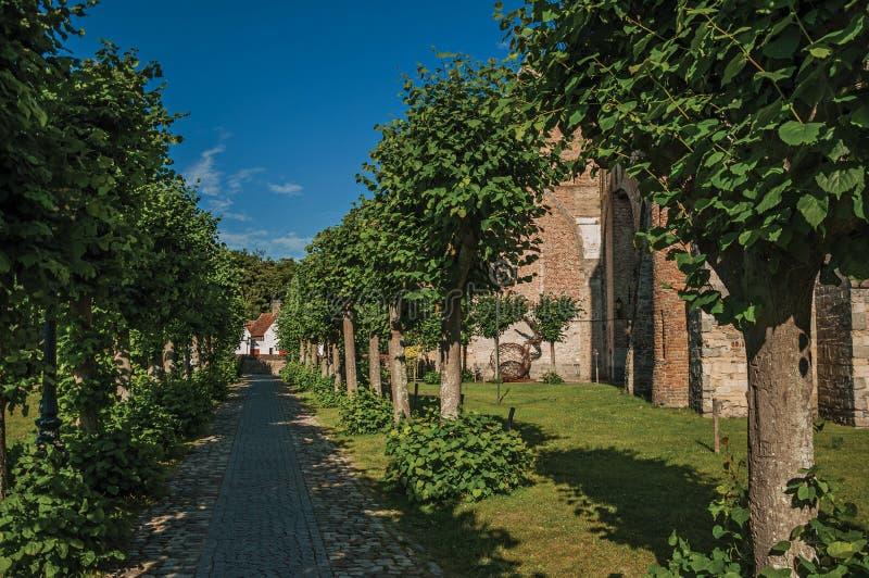Caminho com as árvores no jardim de ruínas medievais da igreja, no final da luz da tarde em Damme foto de stock royalty free