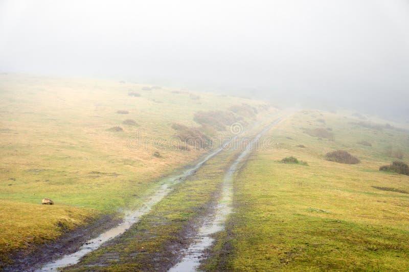 Caminho com névoa foto de stock